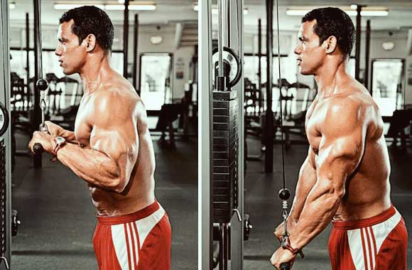 Triceps-Pushdown-Rope-2-